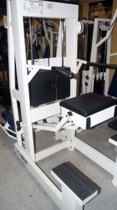 Cybex Assisted Chin Up Dip