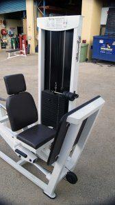Calgym Synergy Seated Leg Press
